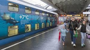 Правила перевозки детей в поезде Северная Пальмира